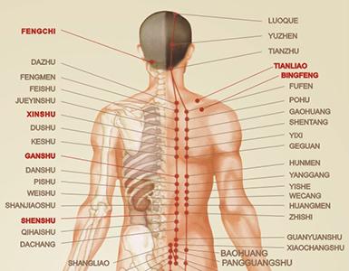 massaggio complesso alla schiena Komoder KM350S